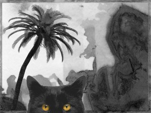 katten33